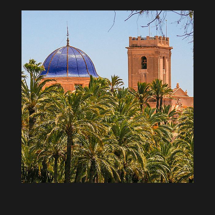Conoce La Basílica Santa María Elche